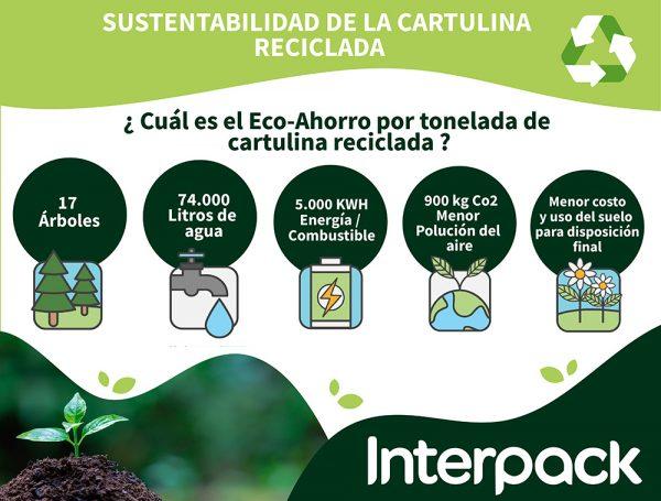 BLOG – Cartulina reciclada, aliado en la sustentabilidad