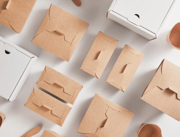 Volvemos a innovar, lanzamos al mercado los primeros potes de helado en cartulina biodegradables
